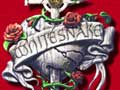 Whitesnake