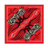 Global Warming Tour Bandana