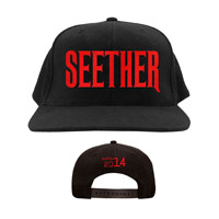 Seether 2014 Hat