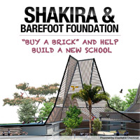 Help Shakira Build a School