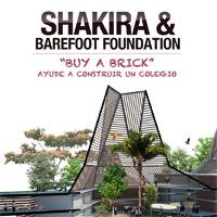 Ayude a Shakira a Construir un Colegio