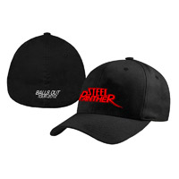 Steel Panther Balls Out Fitted Hat
