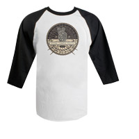 STP Album Artwork Raglan