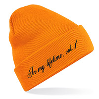 Jay-Z In My Lifetime, vol. 1 Beanie*