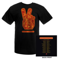 2010 STP Album Cover Tour Tee